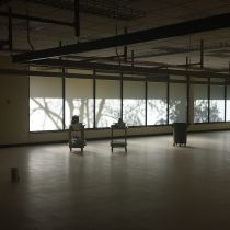 Diffused light with opaque options from All Weather Glass Tinting
