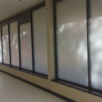 Opaque options from All Weather Glass Tinting